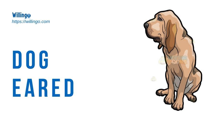dog-eared nghĩa là gì